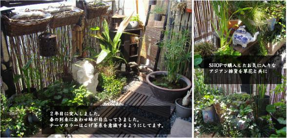 kem's garden